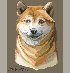 Colored shiba inu portrait vector