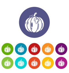 pumpkin icons set color vector image