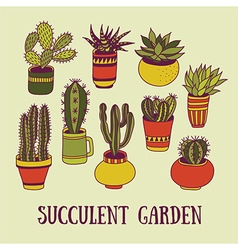 Succulents garden vector