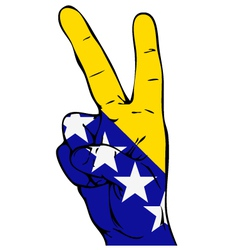 Peace Sign flag of Bosnia and Herzegovina vector image vector image