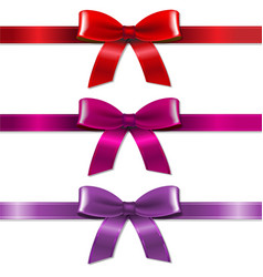 satin color bows set vector image