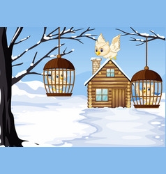 winter scene with white owls in bird cages vector image vector image