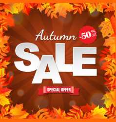 Autumn sale with leaves border vector