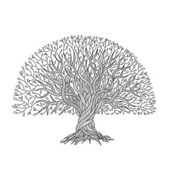 big tree with roots for your design vector image