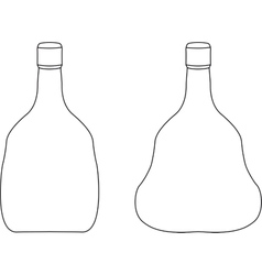 Bottle contour vector image