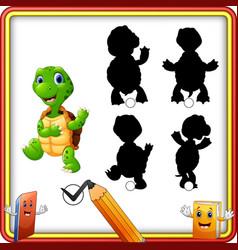 Find correct shadow cartoon funny turtle wavi vector