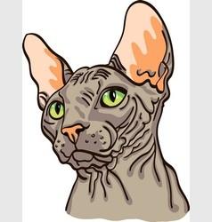 Head sphinx cat vector
