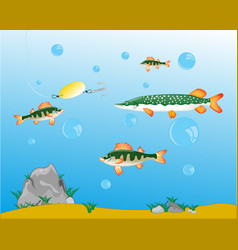 fishing on pike and perch vector image vector image
