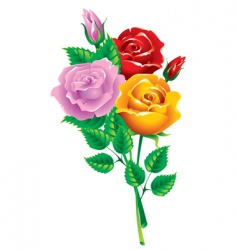 bouquet of multicolored roses vector image