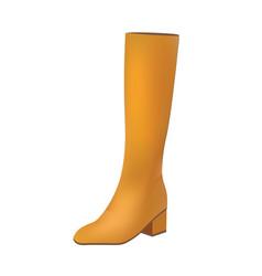 brown women long boot vector image