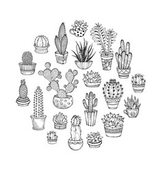 cacti and succulents round doodles vector image