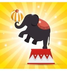 Elephant balance festival funfair vector