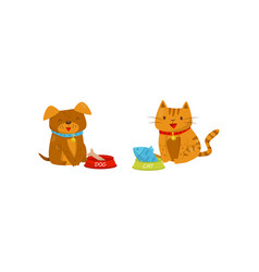 funny dog and cat eating food cute domestic pet vector image