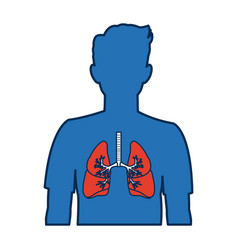 Human silhouette with respiratory system vector