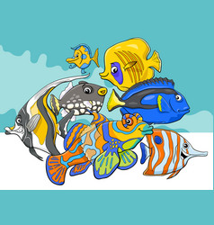 tropical fish sea life animal characters group vector image