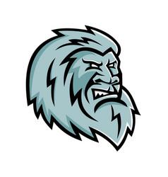 yeti head mascot vector image