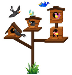 different types of birds in birdcage vector image