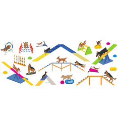 Dog playground equipment set colour flat playing vector