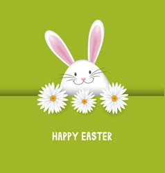 easter background with bunny and daisies vector image