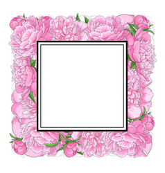 Hand-drawn peony flowers forming square frame vector