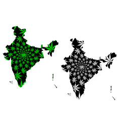 India - map is designed cannabis leaf vector
