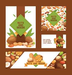 Nut nutshell of hazelnut walnut and almond nuts vector