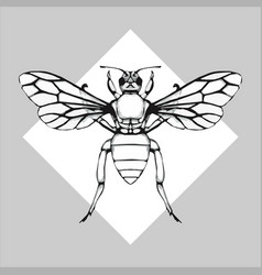 Orchid bee drawing vector