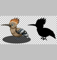 Roadrunner bird cartoon character with its vector