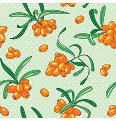 Sea buckthorn seamless pattern vector image