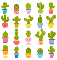 Set of cactuses in the pots vector