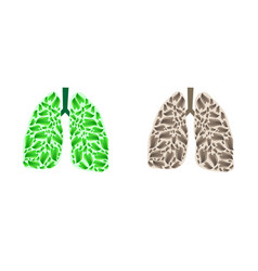 lungs silhouette with leaves vector image vector image