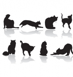 Cat pose vector