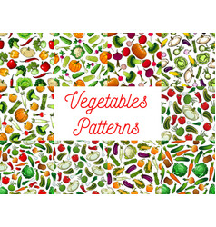fresh vegetables seamless pattern set vector image