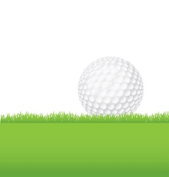 Golf Ball in the Grass vector image