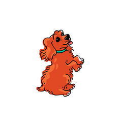 cute cartoon dog standing on its hind legs with vector image