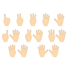 Fingers hands counting education set vector