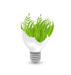 Lamp with green grass and plants inside vector image