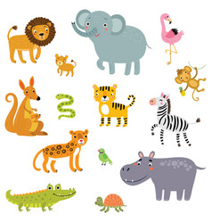 set exotic animals vector image