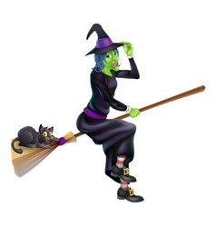 Witch on broom with black cat vector