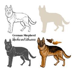 German shepherd dogs sketches vector