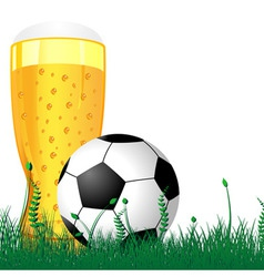 beer and soccer ball vector image vector image