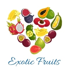 Exotic fruits heart shape symbol with fruit icons vector image vector image