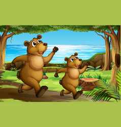 bear running in forest vector image