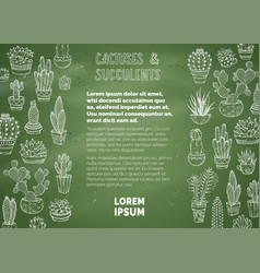 Cactuses and succulents chalk background vector