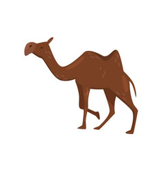 Flat icon of brown camel side view desert vector
