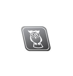 owl open eyes for logo design wise bird in a vector image