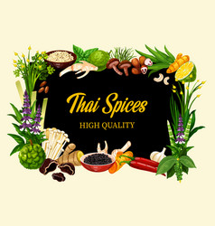 Thai cuisine spices and herbs cooking seasonings vector
