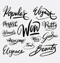 Wow and popular hand written typography vector
