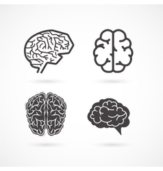 Brain - set of and icons vector image