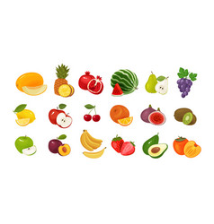 Fruits and berries set colored icons food vector